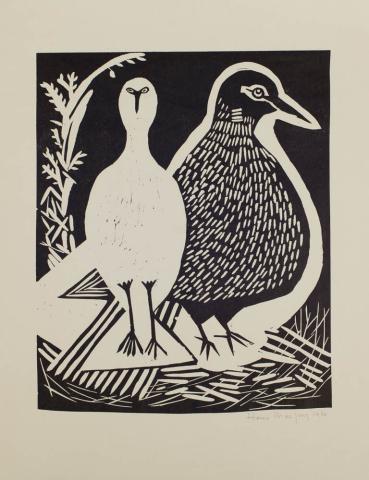 H. de Jong - Rare vogels